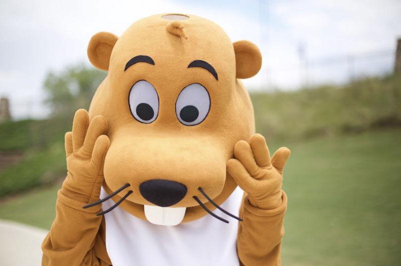 A custom beaver mascot