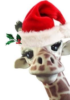 BAM Mascot's Holiday Giraffe