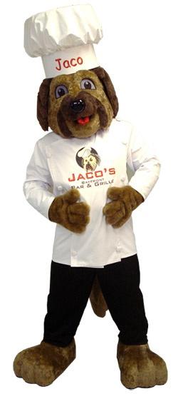 Bam Mascot Jaco Finished Costume