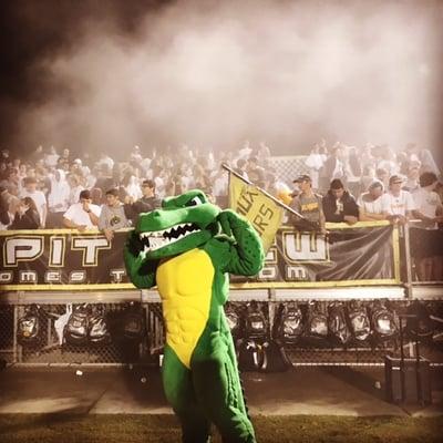 St. Amant HS custom designed aligator Mascot
