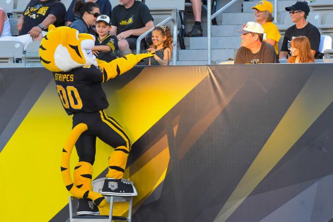 Stripes Hamilton Tiger Cats Football Mascot