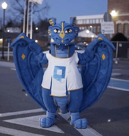 Dragon Mascot - custom designed mascot