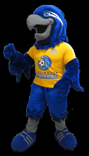 Burlington Bayhawks Soccer Club Burli Mascot Costume