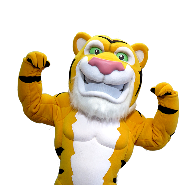 Hamilton Tiger Cats Mascot Creation