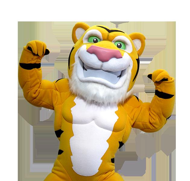 Tiger Cat Mascot Manufacturer