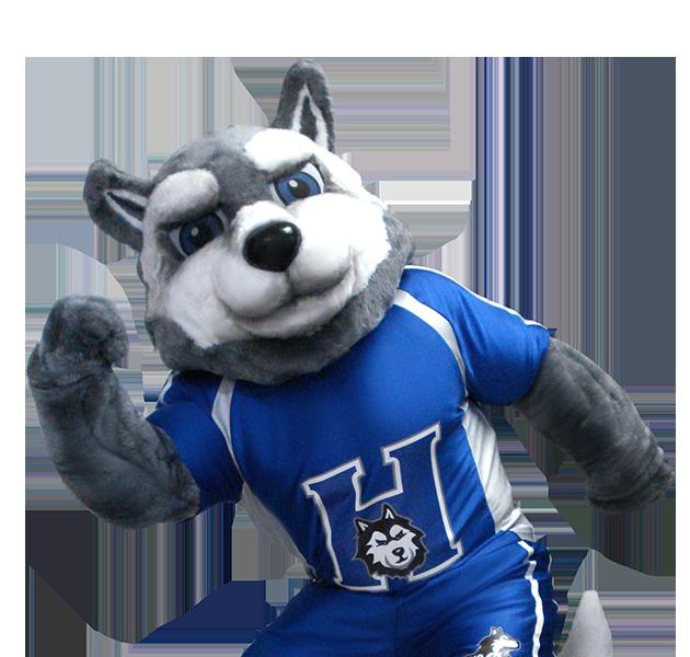Husky Dog Custom Mascot Maker