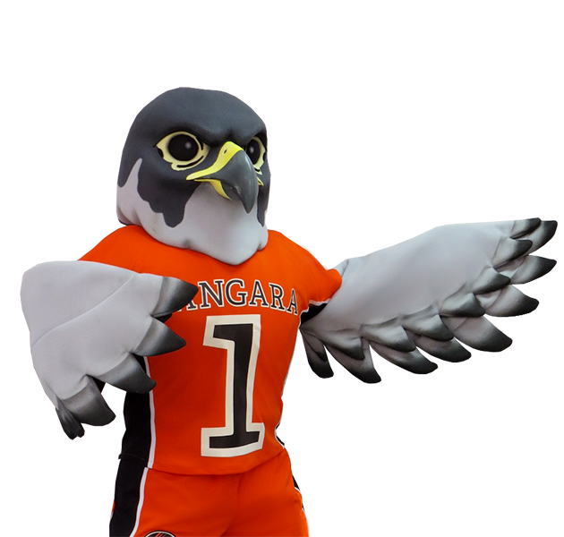 Custom Falcon Sports Mascots
