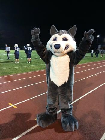 Mascot at sports event